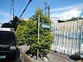 09854jfSM City Manila Natividad Lopez Ayala Boulevard Bridgefvf 03.jpg