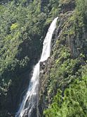 1,000 foot water fall at Mountain Pine Ridge in Belize.jpg