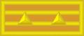 12陆军中校.png