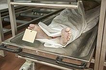 تجارت جسد در کشور