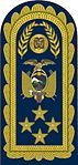 17 - FAE - Pala de General del Aire - General of Air.jpg
