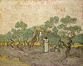 1889 van Gogh Women picking olives anagoria.JPG
