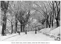 1894 Nov6 snow BostonCommon Bostonian v1 no1.png