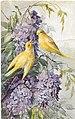 1908-fiori-e-uccelli-02.jpg