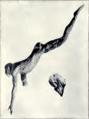 1911 Britannica - Aegean - Cnossus4.png