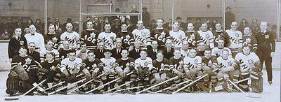 Match Des étoiles De La Ligue Nationale De Hockey Wikipédia