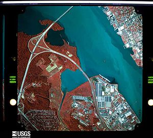 Goose Island (District of Columbia) - 1983 false-color aerial photograph of the Potomac River. The small red speck, and the visible sandbar to its left, are parts of Goose Island.