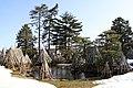 1 Chome Marunouchi, Yonezawa-shi, Yamagata-ken 992-0052, Japan - panoramio.jpg