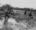 1st Cavalry Division Leyte Dezember 1944.jpg