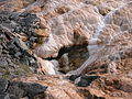 2003-08-19 Palette Spring runoff at Yellowstone.jpg