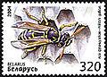 2004. Stamp of Belarus 0567.jpg