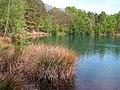 20050521125DR Teichlandschaft Kromlau - Weißwasser.jpg