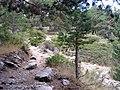2011-09-17 Trialera - panoramio.jpg