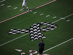 American football field with a houndstooth awareness ribbon painted on it.