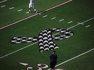 2011 Alabama Crimson Tide football team - Detail of the houndstooth awareness ribbon painted on-field in remembrance of the victims and damage of the April 2011 tornado.