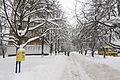 2012-12-25 Volhohradska Street, Kiev.jpg