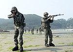 2015.7.14. 연평부대 - 지뢰탐지작전훈련 14th, July, 2015, ROK Marine YP Unit-Training to detect of mines (19142872443).jpg