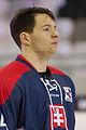 20150207 1756 Ice Hockey AUT SVK 9472.jpg