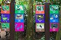 2016 Singapur, Jurong Bird Park (058).jpg