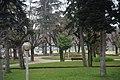 20200204 CoimbraSub 5872 (49656933198).jpg