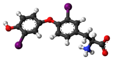 Ball-and-stick model of the 3,3'-diiodothyronine molecule as a zwitterion