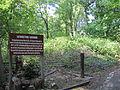 32 Lewiston Mound 2.JPG
