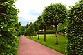 3453. Pushkin. Old garden.jpg
