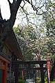 4 Uenokōen, Taitō-ku, Tōkyō-to 110-0007, Japan - panoramio (2).jpg