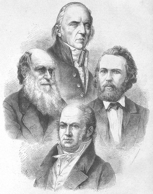 4 evolutionists (1873).jpg