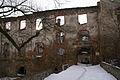 623viki Ruiny zamku w Pankowie. Foto Barbara Maliszewska.jpg