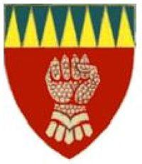 7 Light Anti-aircraft regiment emblem