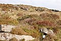 A Dartmoor letterbox on Laughter Tor - geograph.org.uk - 980028.jpg