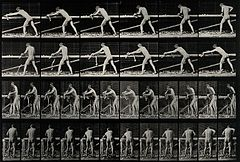 A carpenter planing. Photogravure after Eadweard Muybridge, Wellcome V0048690.jpg