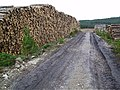 A few logs - geograph.org.uk - 57580.jpg