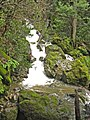 A minor cascade on Cataract Creek. During summer and autumn this will be a minor trickle. - panoramio.jpg