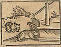 A mousetrap (1614).jpg