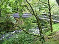 A new bridge above Skelwith Force - geograph.org.uk - 532896.jpg