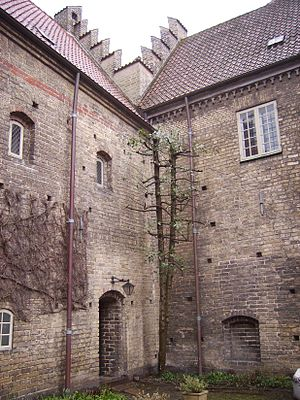 Hospital of the Holy Ghost, Aalborg - Aalborg Kloster