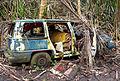 Abandoned car in the jungle, Big Island.jpg