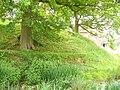 Abinger Motte - geograph.org.uk - 817469.jpg
