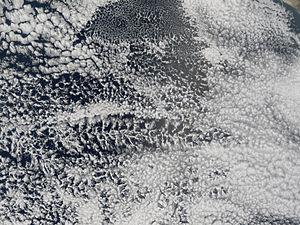 Actinoform cloud - Image: Actinoform Open Cell Clouds MODIS 30sep 05
