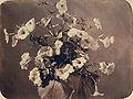 Adolphe Braun - Flower study.jpg