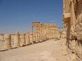 Agora -3 Palmyra Syria.JPG