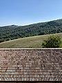 Agriturismo Cavazzone, Viano, Italy, 2019 - views from windows 11.jpg