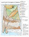Alabama Level IV ecoregions.pdf