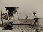 Albatros D.IX.jpg