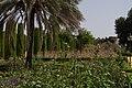 Alcazar de los reyes cristianos gardens Cordoba.jpg