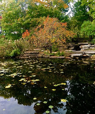 Alfred Caldwell Lily Pool - Image: Alfred Caldwell Lily Pond with rocks