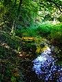 Alto Adige Suedtirol Biotopo Rio dei Gamberi Krebsbach photo by Giovanni Ussi - 04.jpg
