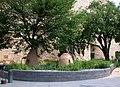 American Indian Museum in June (19466544101).jpg